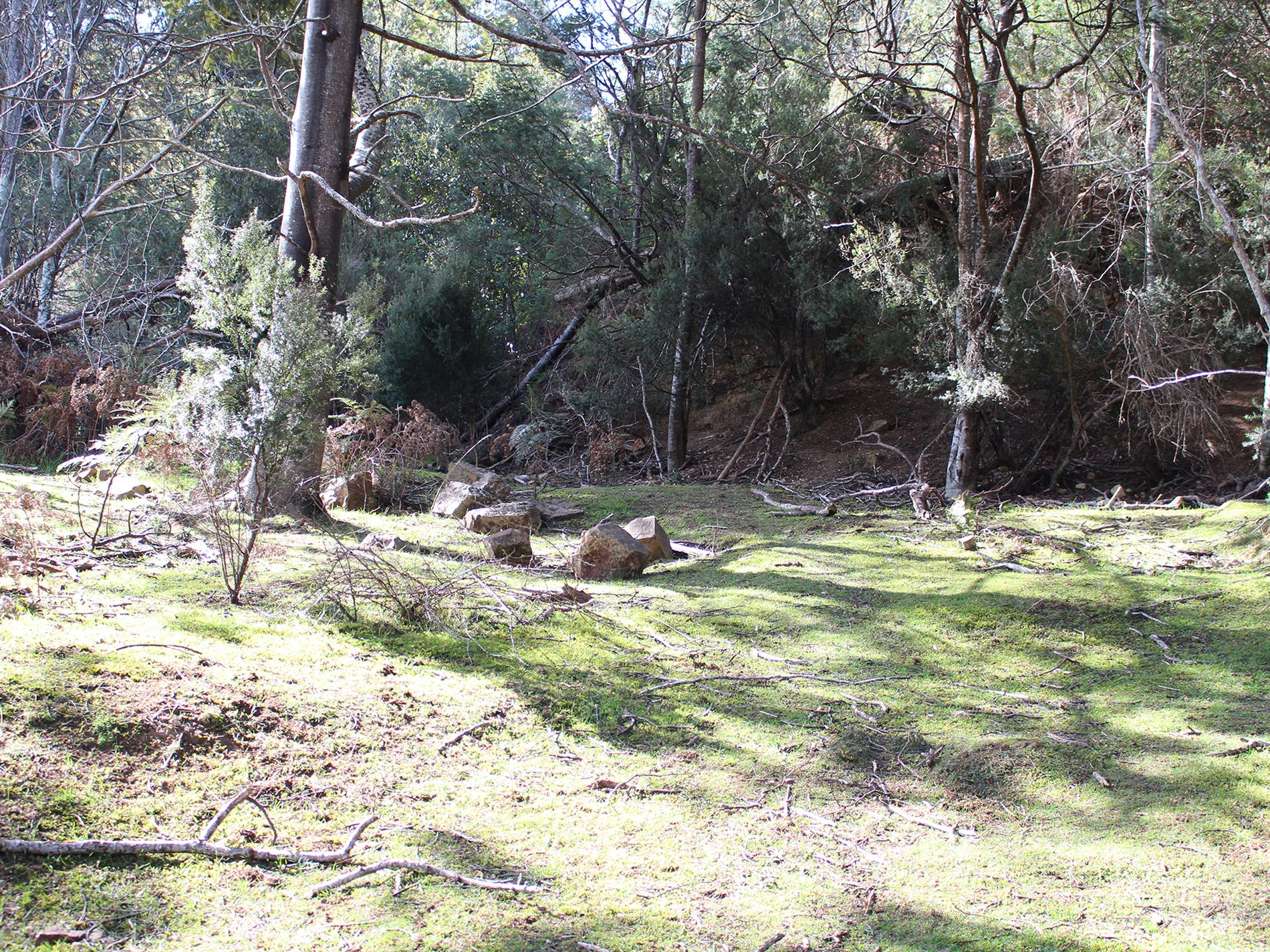 Lot 1 & 1, Off Fourfoot Road, Geeveston