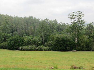 576 Warrawillah Road, Marlee