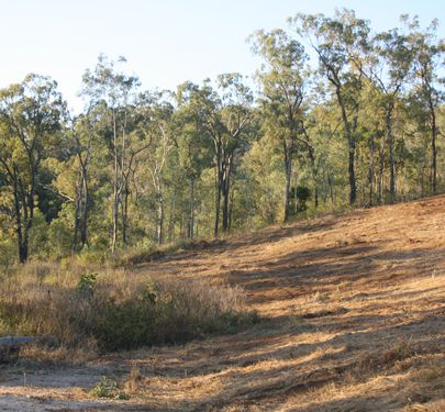 Lot 2, 66 Burdekin Court, Logan Village