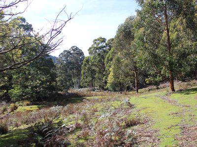 Lot 2 & 2, Off Rocky Creek Road, Crabtree