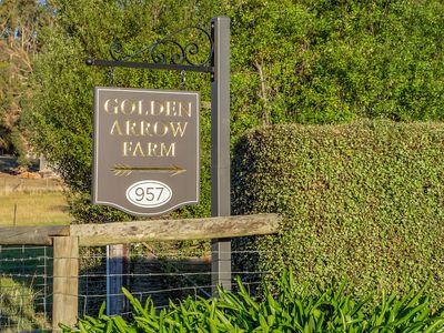 957 Woodbridge Hill Road, Gardners Bay