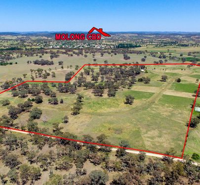 168 Euchareena Road, Molong