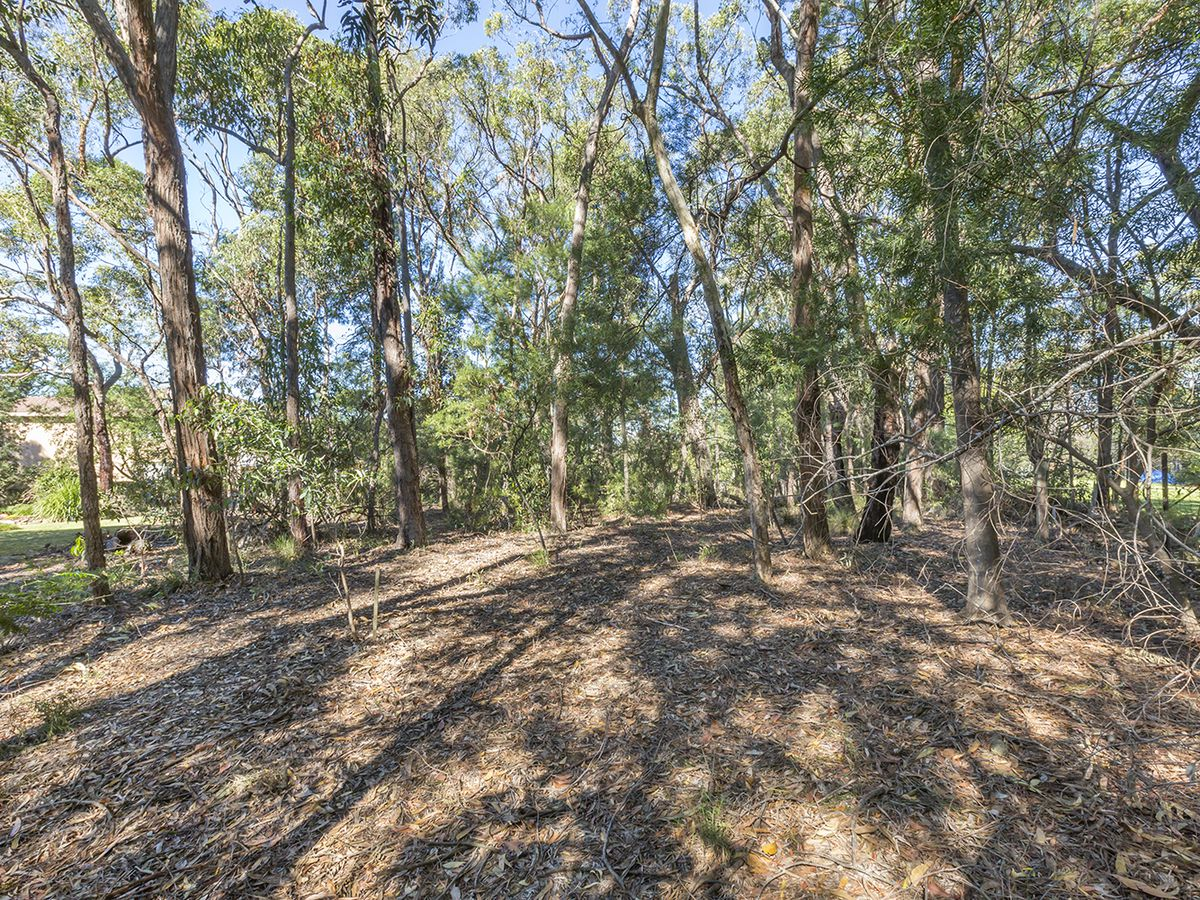 7 Watkin Wombat Way, Faulconbridge