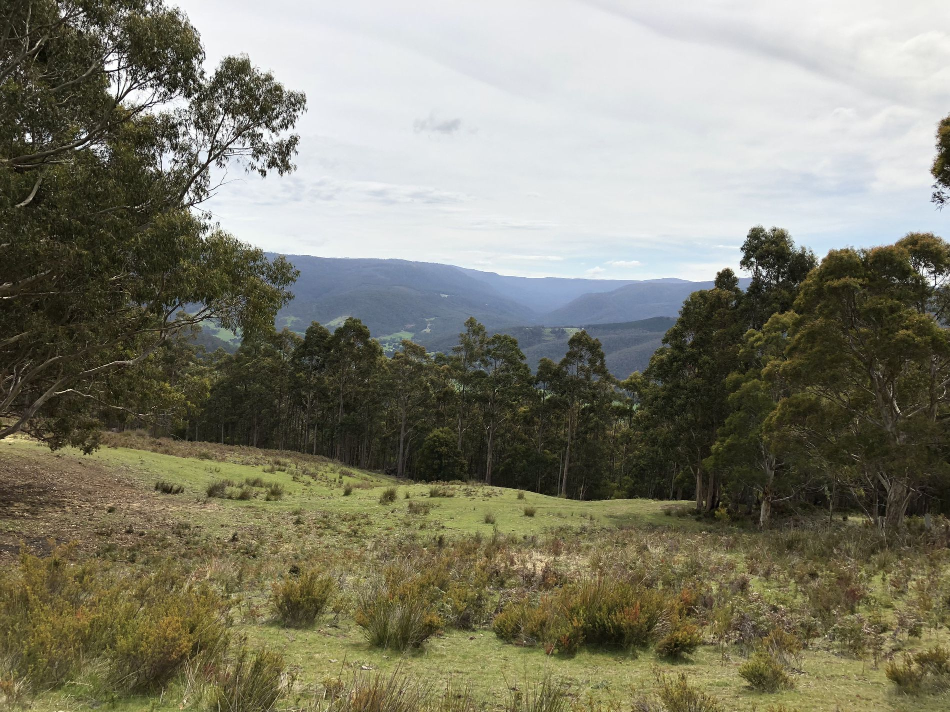 Lot 1, Lightwood Creek Road, Glen Huon
