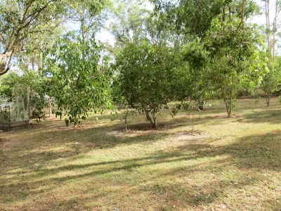 624 Wingham Rd, Taree