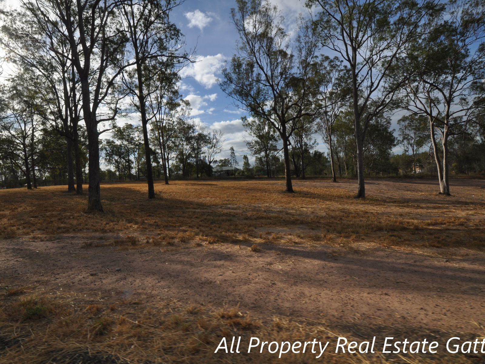 23A Forest Avenue, Glenore Grove