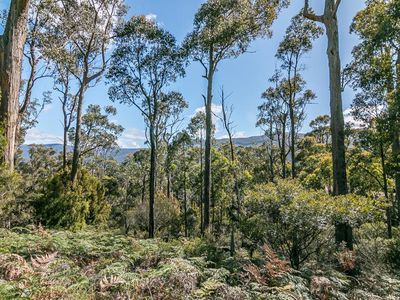 Lot 1 Denison Road, Lonnavale