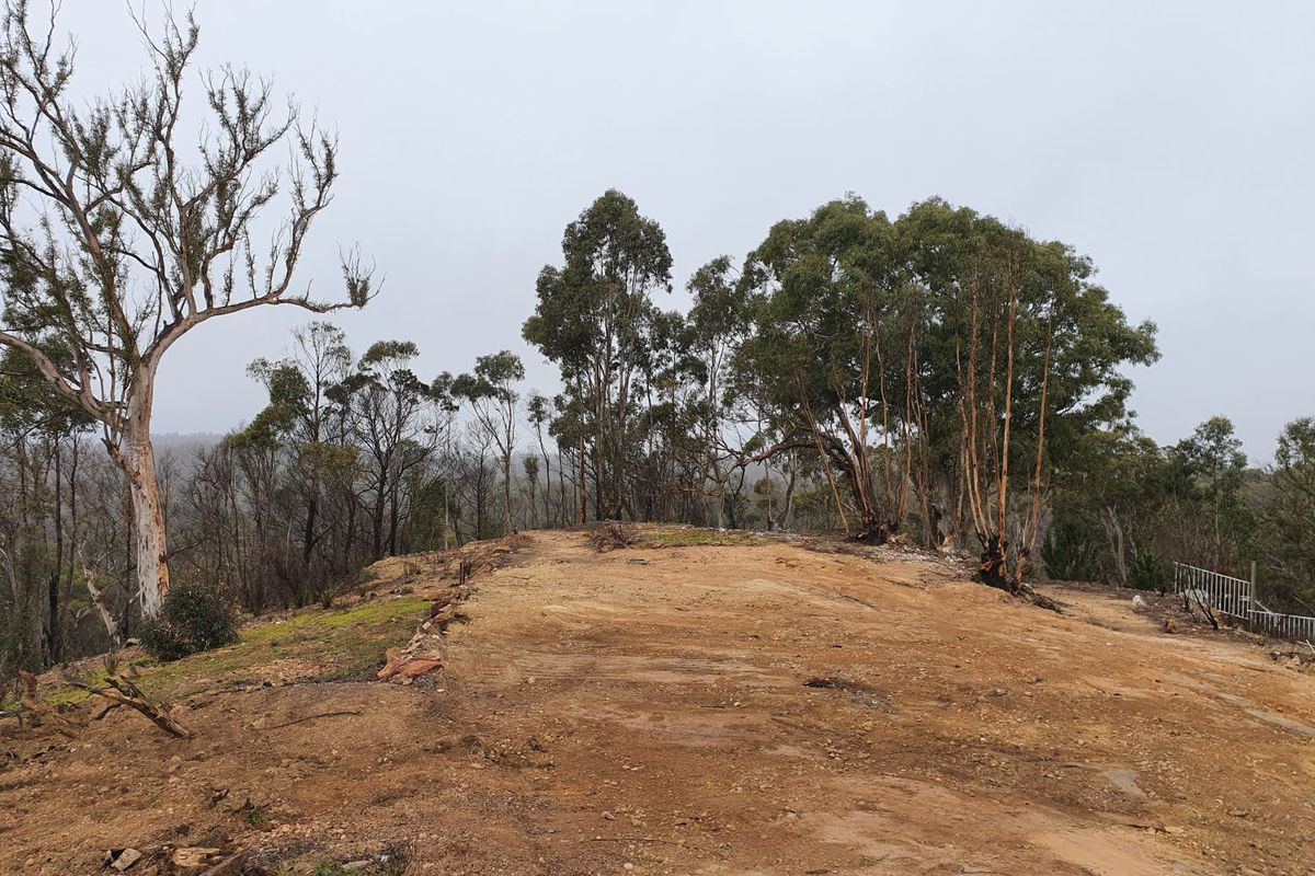 Impacted by bush fires
