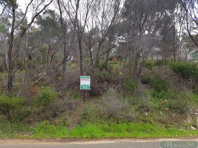 49 Bayview Road , American River