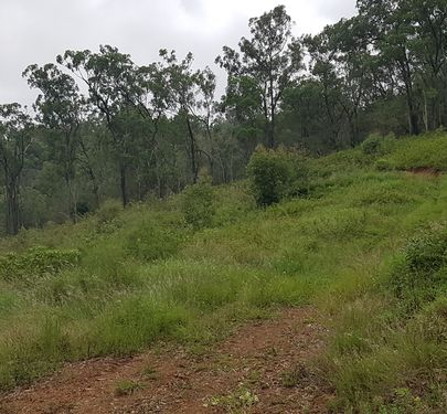 Lot 2 Lot 2 Tomohon Heights Close , Logan Village