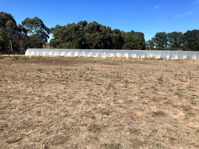 Lot 6, 8 Creek Court , Ballan