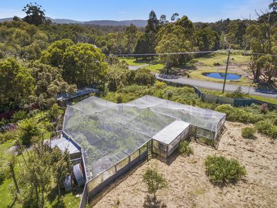 180 Lune River Road, Lune River