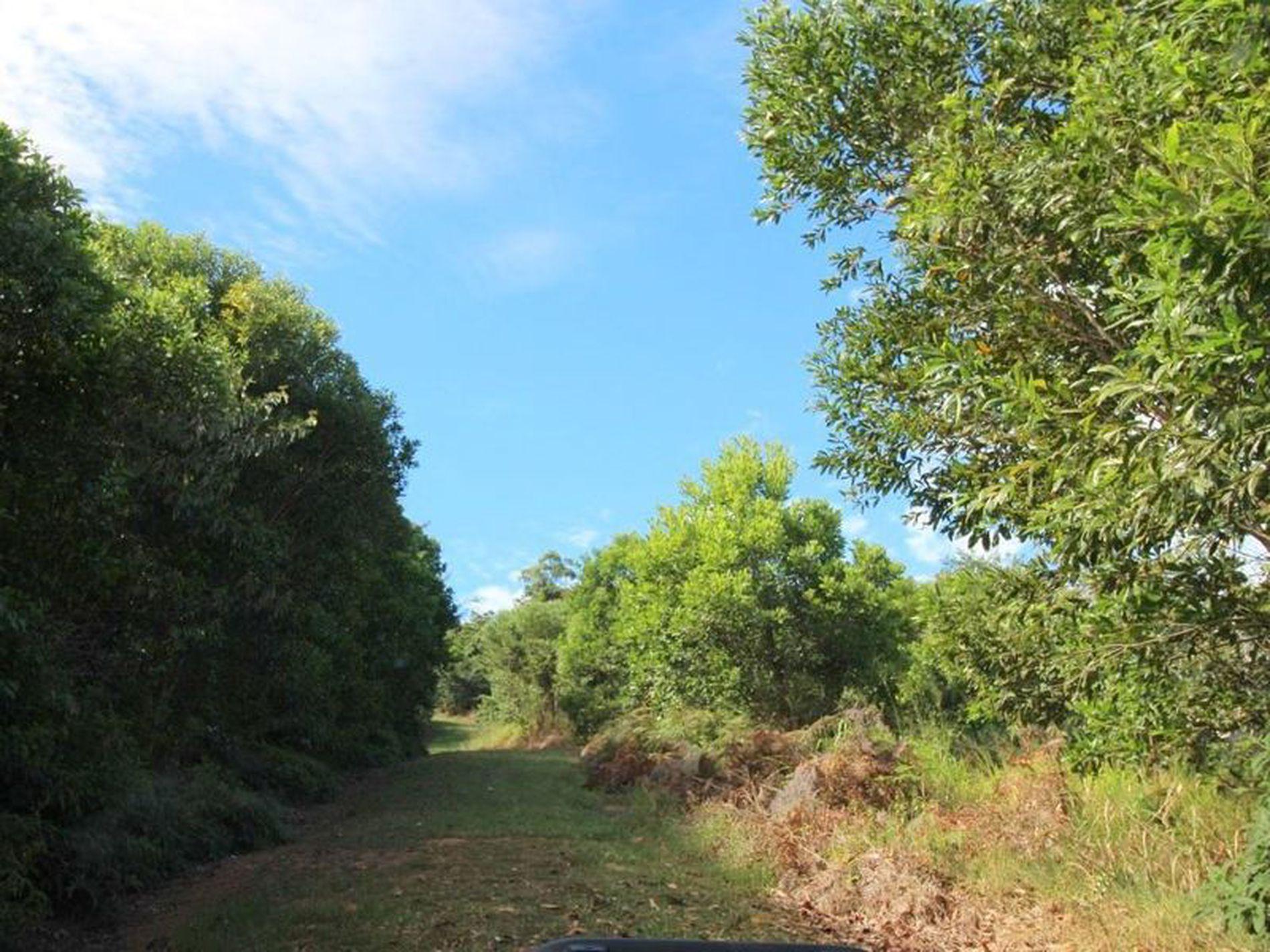 Lot 19, Lot 19 Bilic Road, Shell Pocket