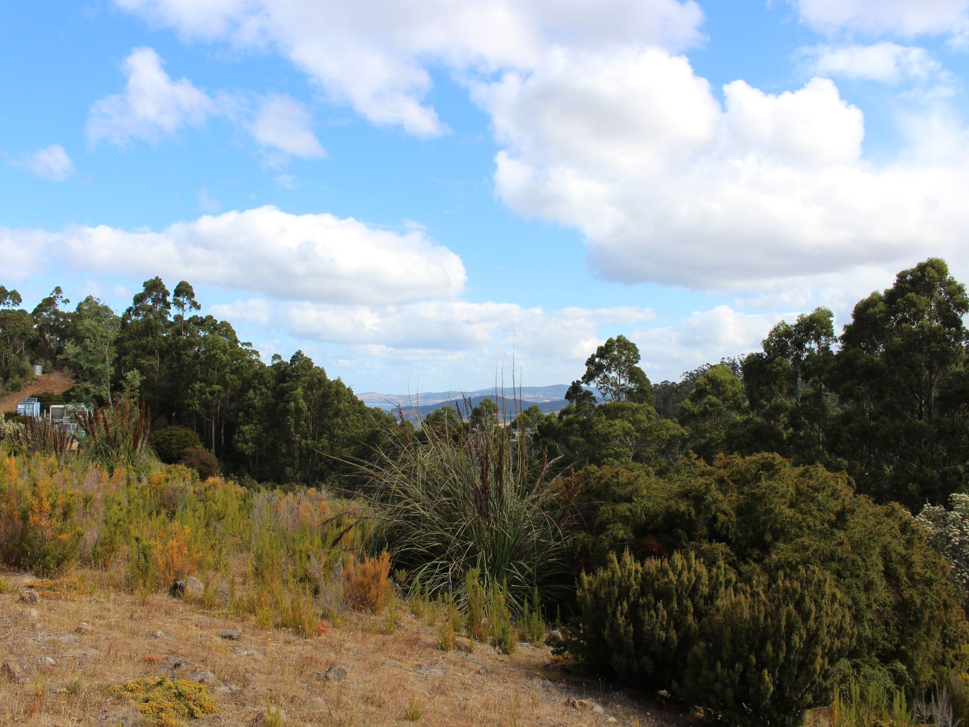 Lot 37  Scanlons Road, Cygnet