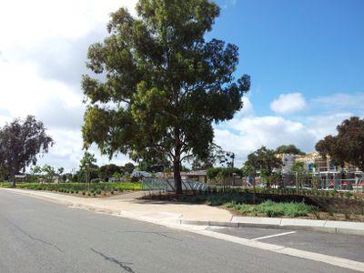 21A Eurunderee Avenue, Seacombe Gardens