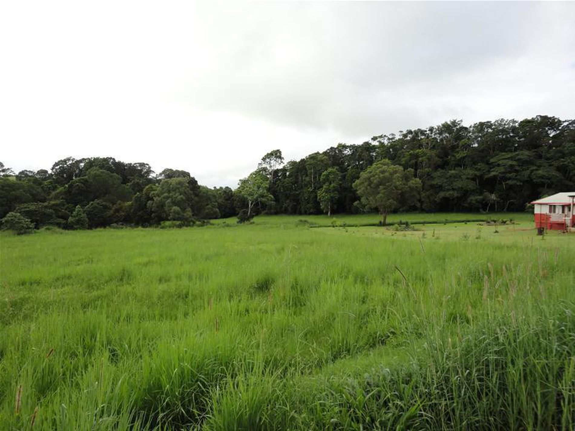 Lot 82, 82 Rosewood Close, Malanda