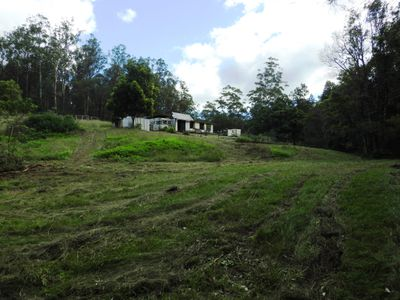 595 LITTLE RUN ROAD, Wherrol Flat
