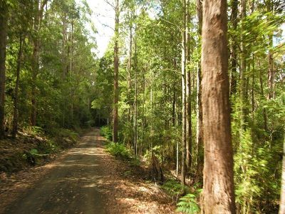 Lot 3 Braeside Road, Franklin