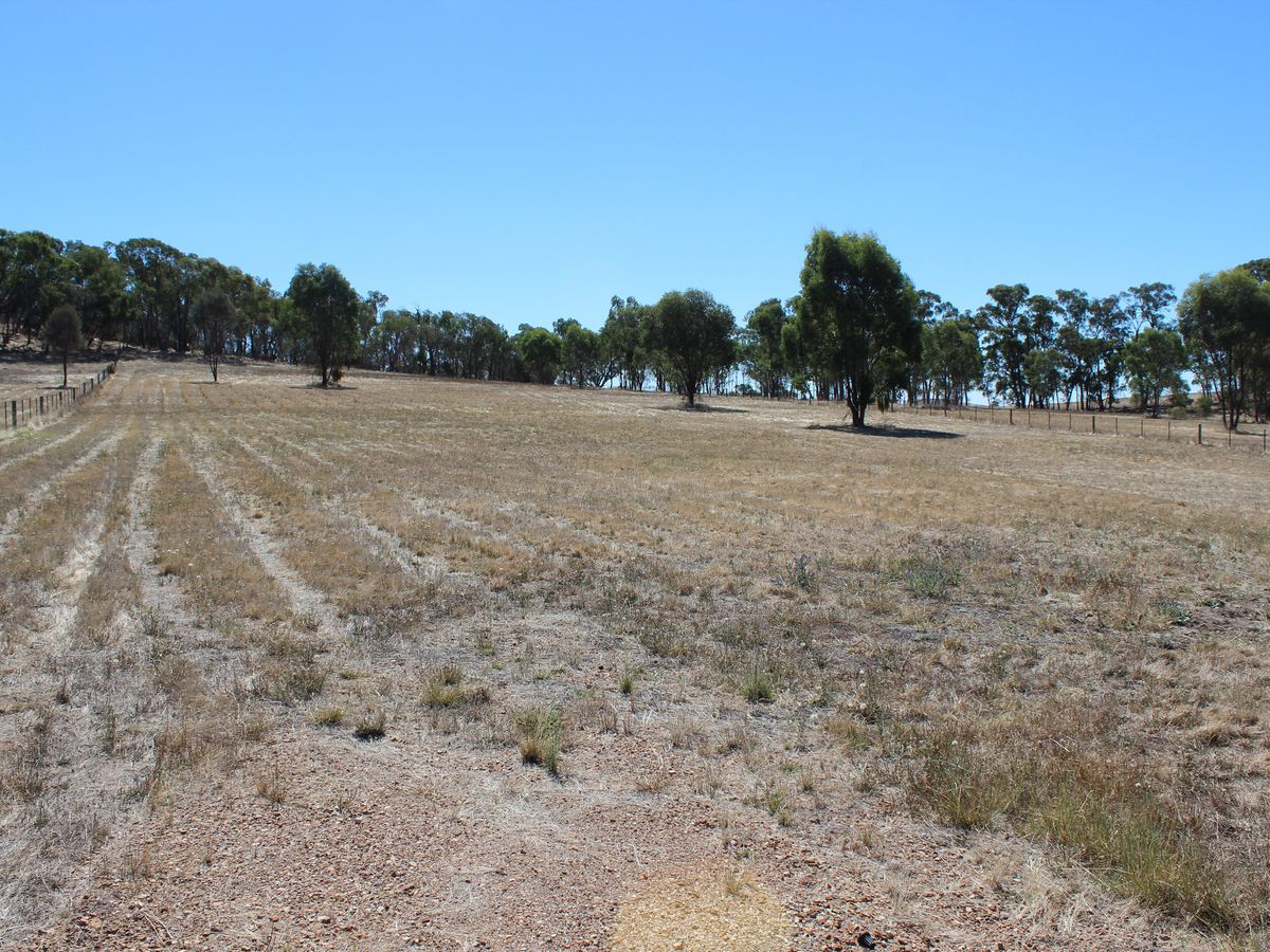 Lot 48, Lakeside Drive, Chesney Vale