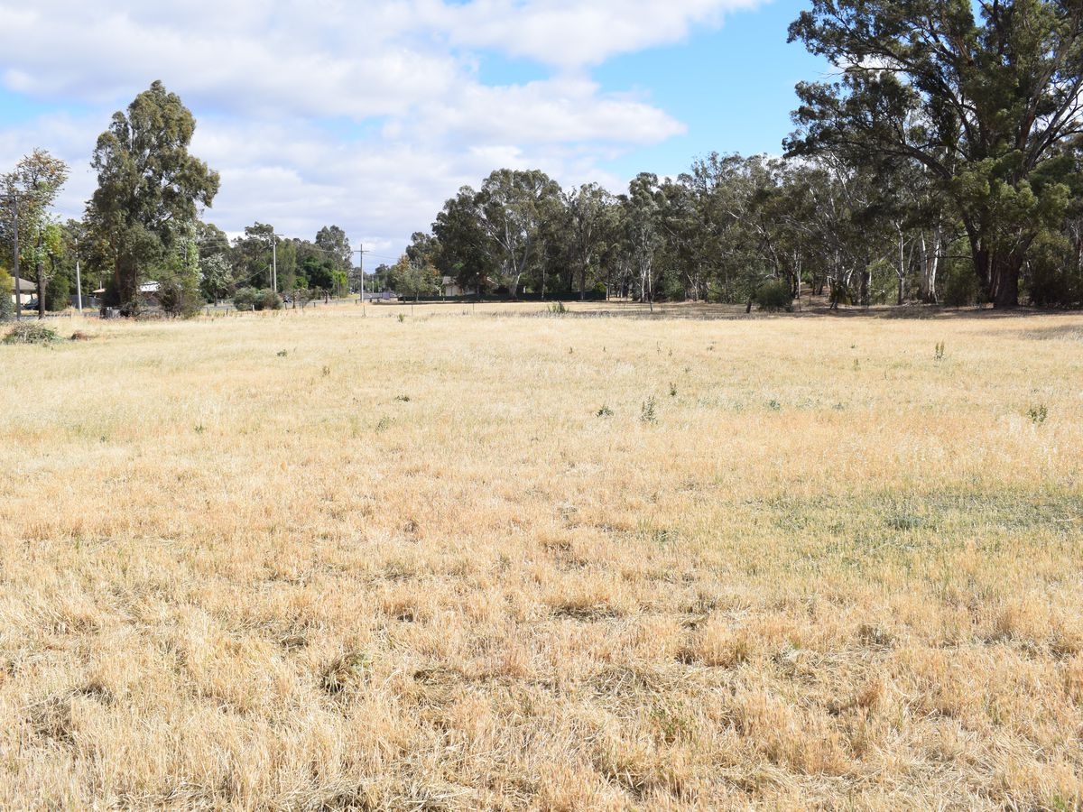 Lot CA 17, High Street, Wedderburn