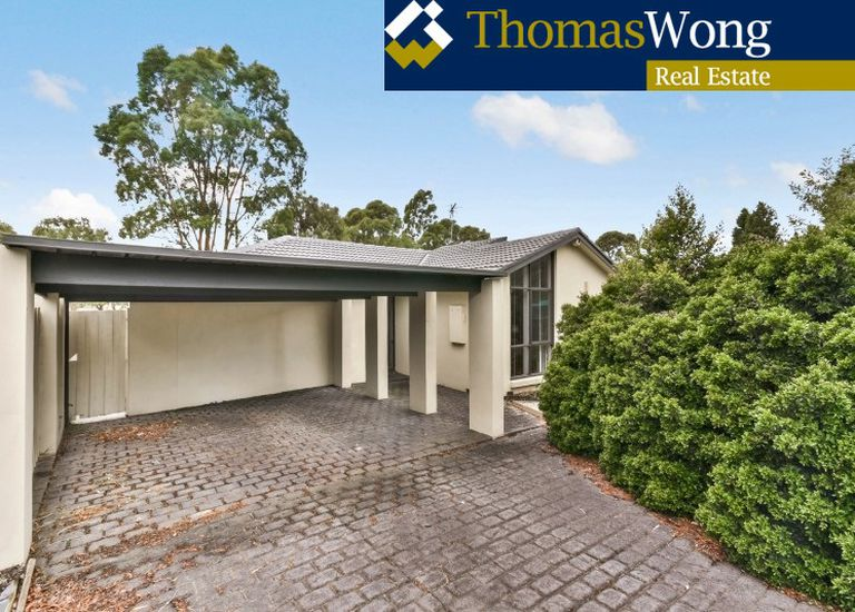 6 Mariposa Court, Wantirna South