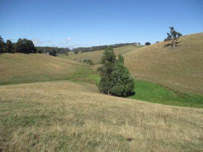 319 Fraser Spur Road, Neerim East