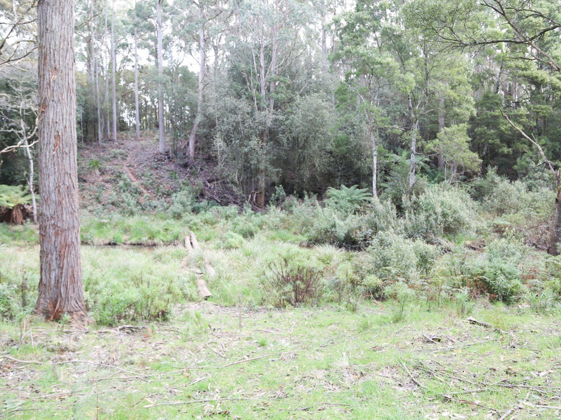 Lot 4, 32 Twin Creeks Road, Mengha