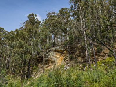 98 Coal Mine Road, Gardners Bay