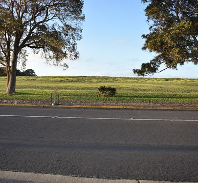 Lot 5-8, 64, 203 Mount Gambier Road, Millicent