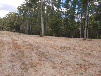 New Subdivision Reservoir Drive, Wynyard