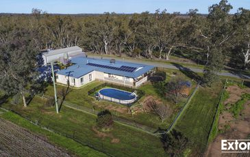 1656 HOPEFIELD ROAD, Balldale