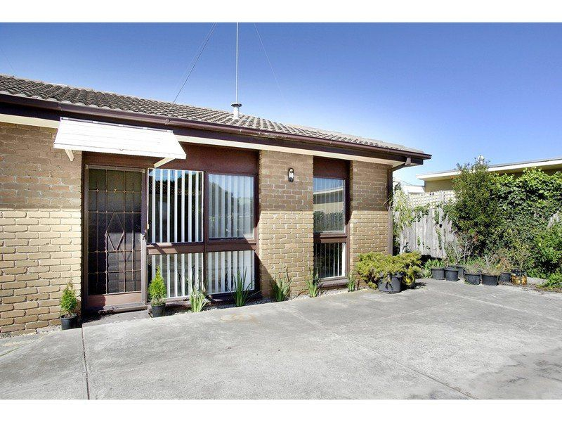 7 / 1 Holyrood Avenue, Newtown