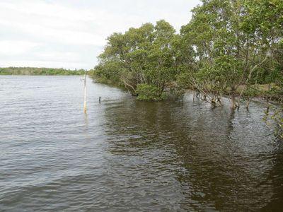 Oxley Island