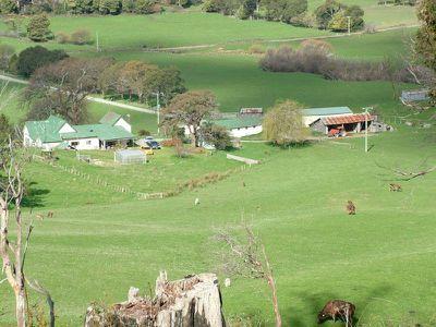 67 Rowleys Road, Karoola