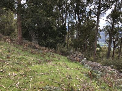 Lot 4, Lightwood Creek Road, Glen Huon