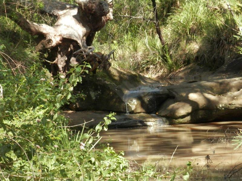 9996 Clarence Way, Louisa Creek