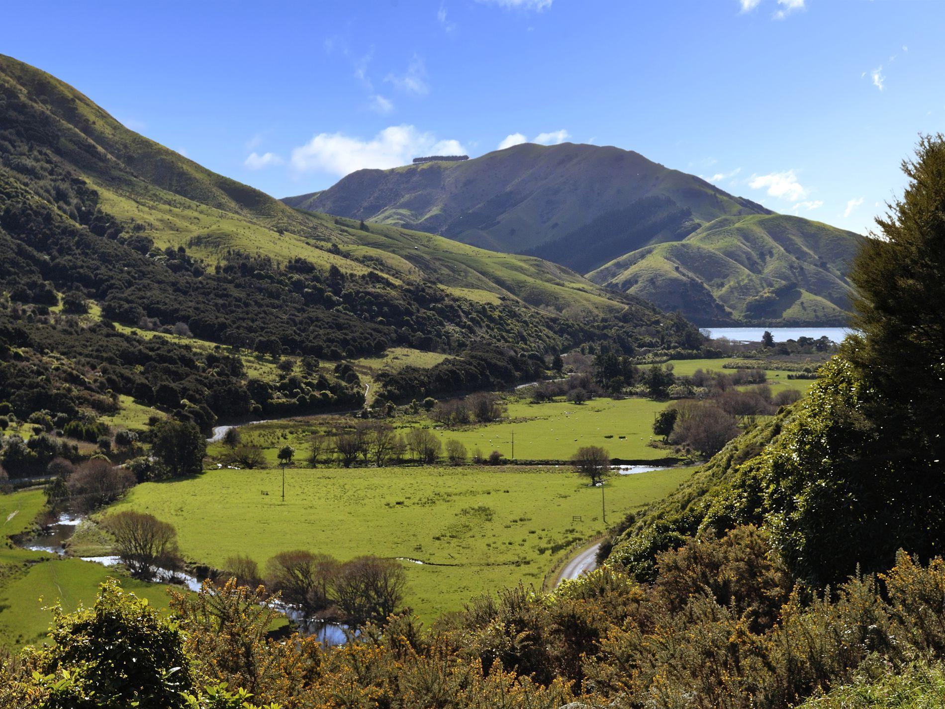 24 Maori Pa Road, Hira