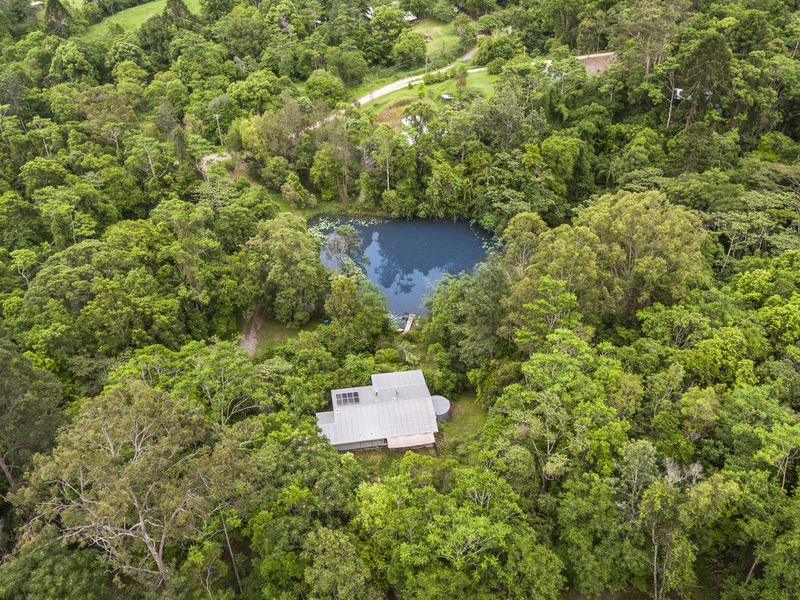Private & Tranquil Rain Forest Retreat on 31 Acres