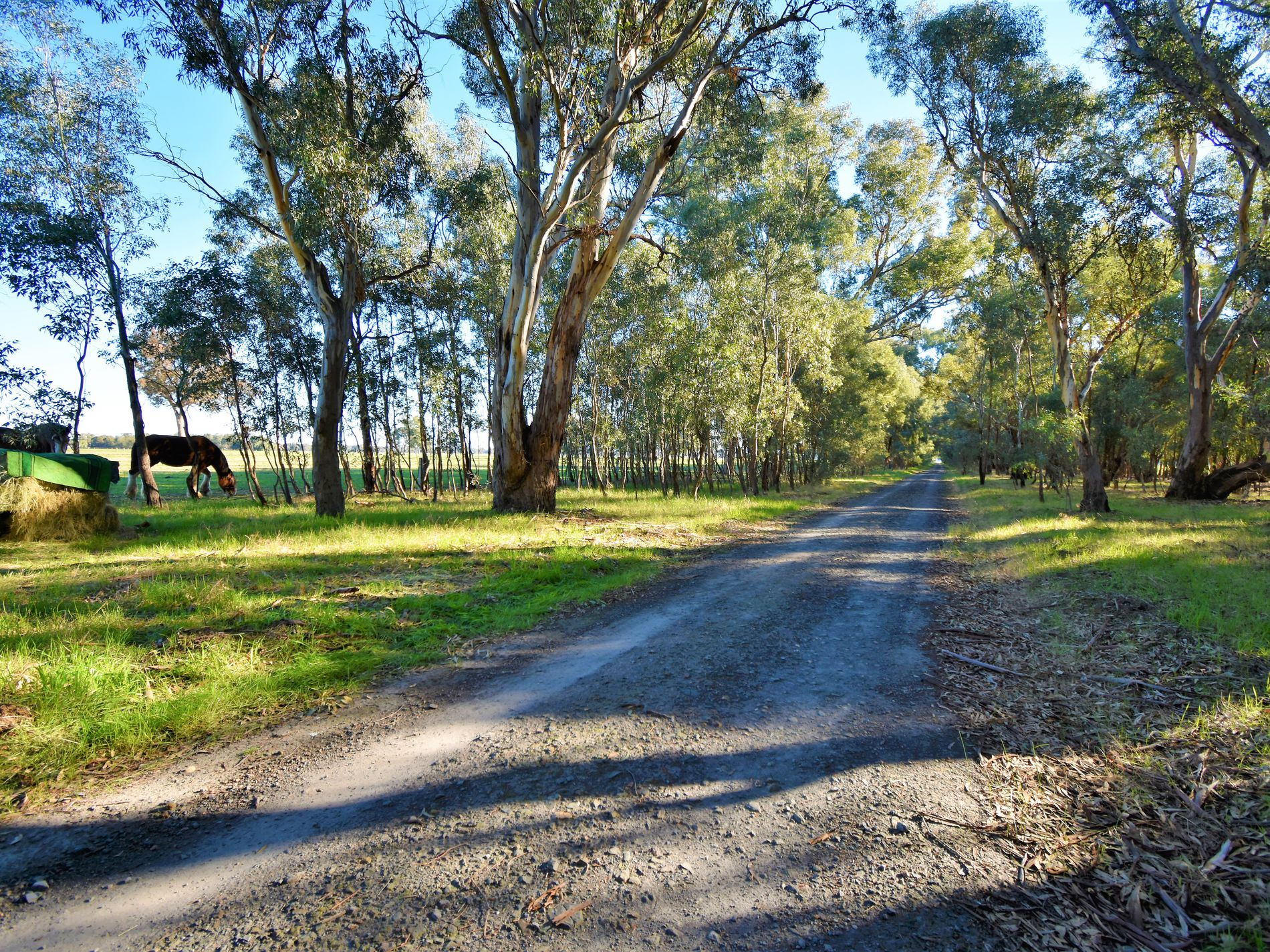 Lot 4B, KLEMM ROAD, Tarrawingee