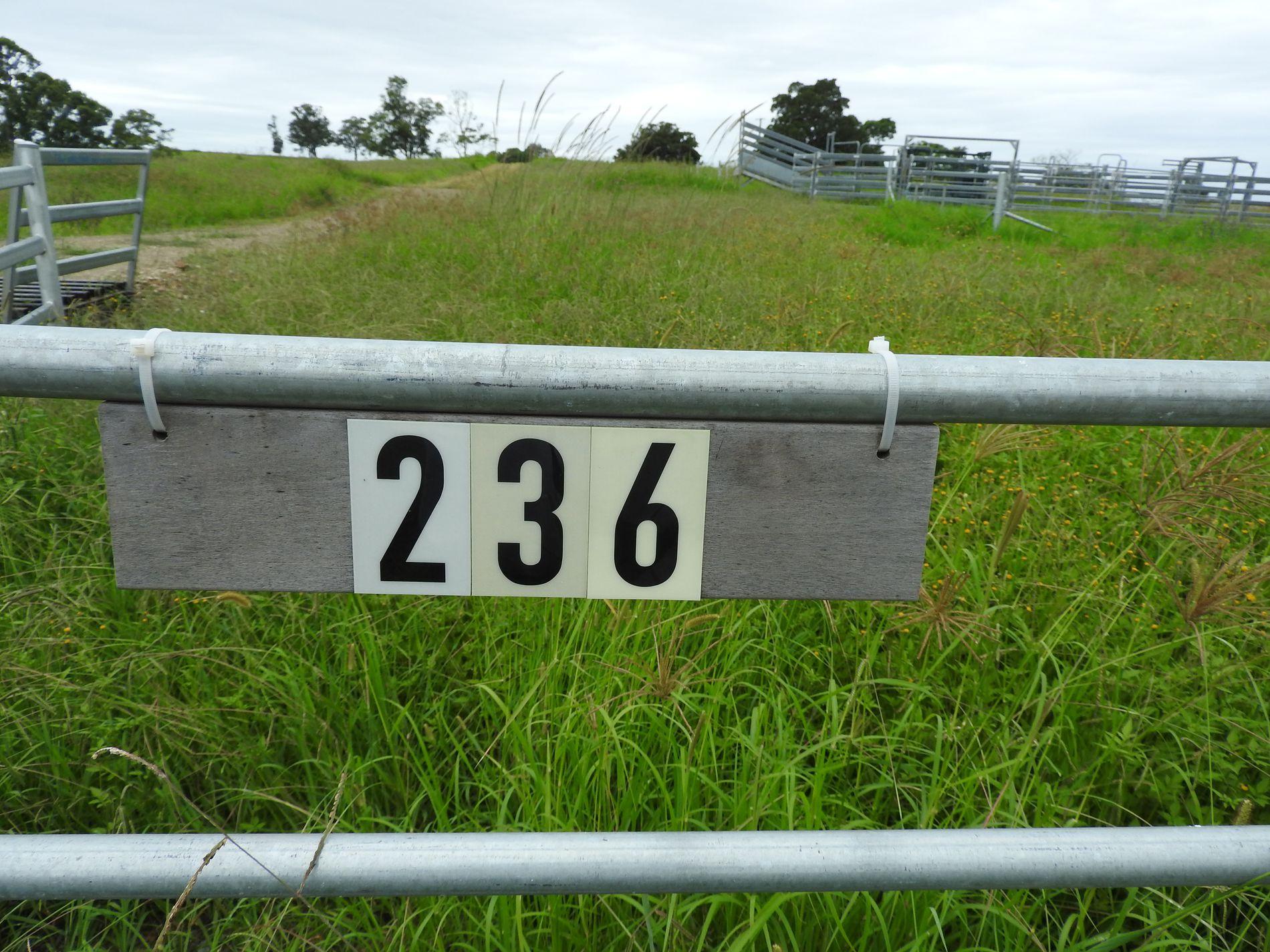 236a Khatabundah Road, Wingham