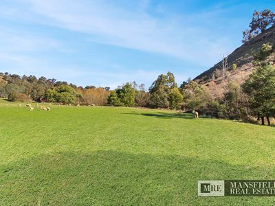 Lot 38, Sawpit Gully Road, Bridge Creek