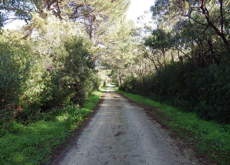 Section 274  bordering Hakea Drive, Boandik Drive and Ruff Rock Road, Millicent