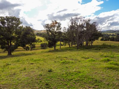 678 Bunyah Road, Coolongolook