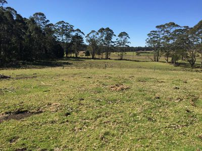 Lot 21 Lemon Tree Creek Road, Lake Tabourie