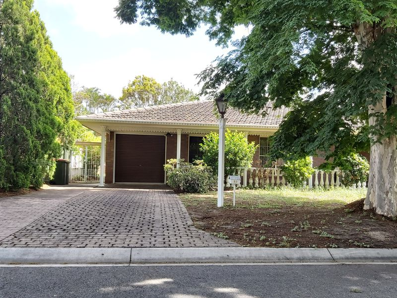 19 Macbeth Place, Sunnybank Hills