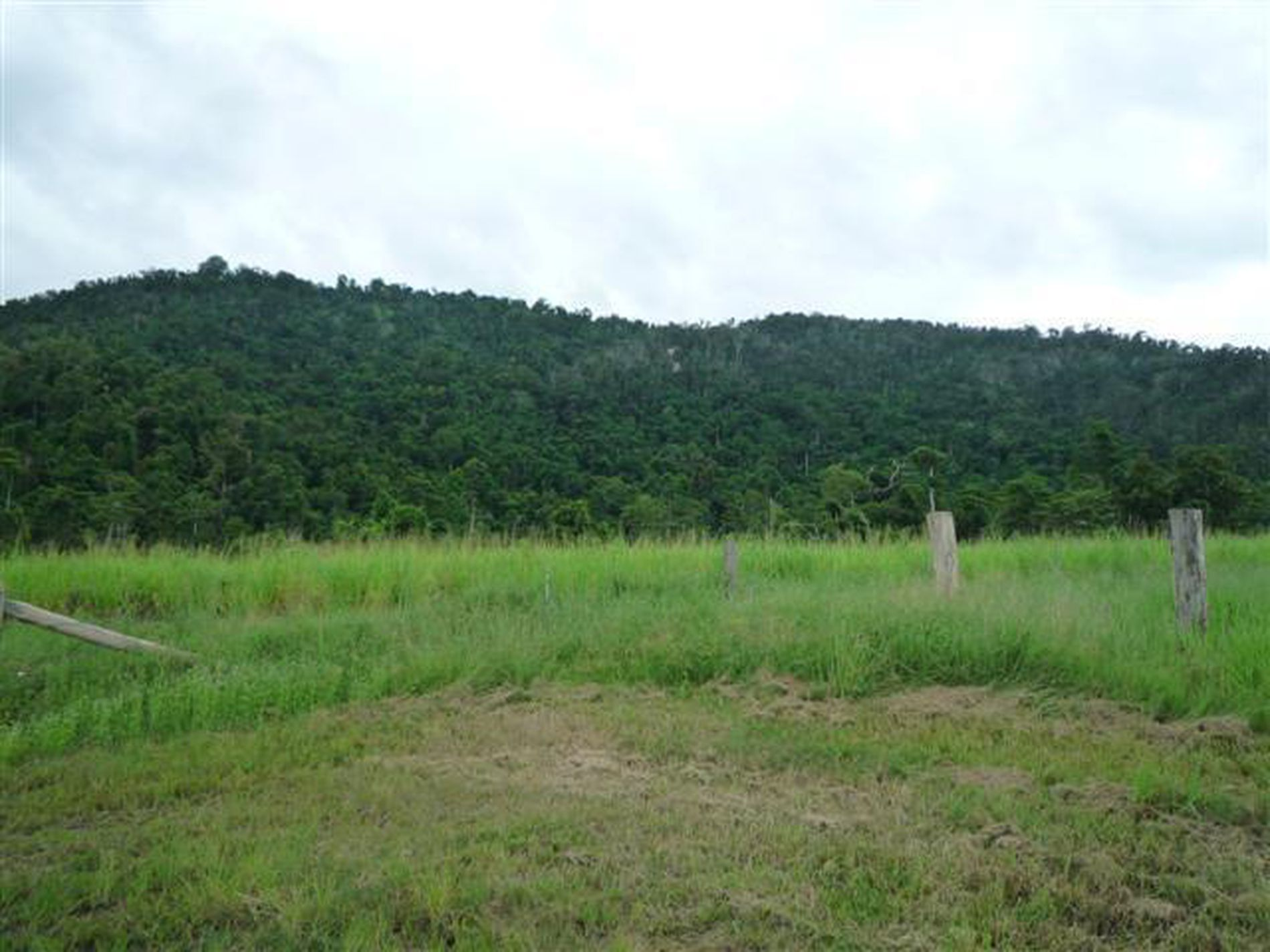 Lot 204, 204 Wall Road, Japoonvale