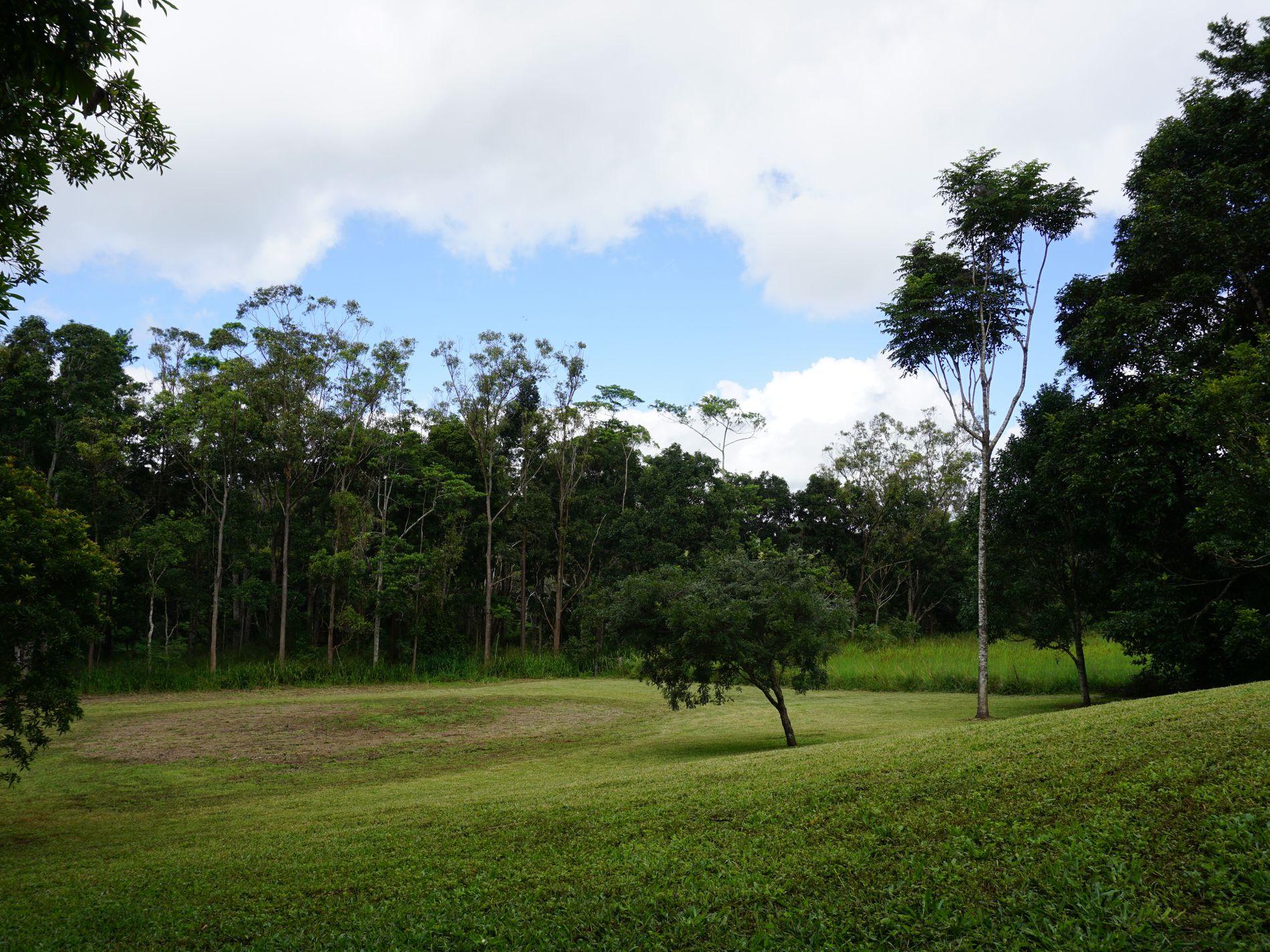 Upper Barron