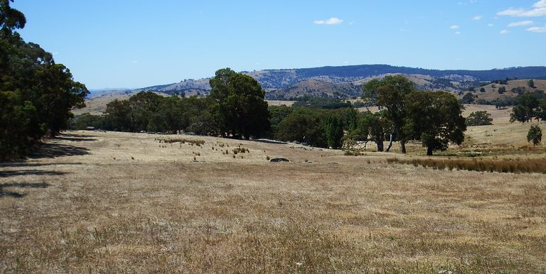 1195 Euroa Strathbogie Road Kelvin View, Euroa