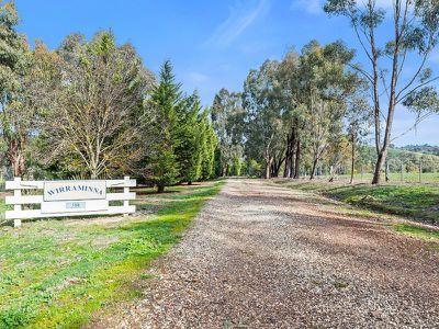 155 Yellow Box Road, Hilldene