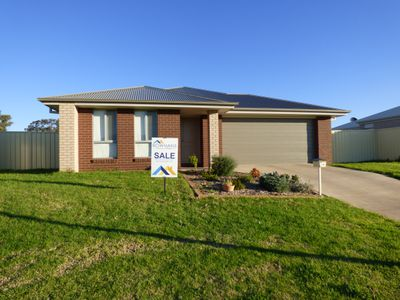 58 Zirilli Avenue, Griffith